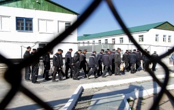 Амнистия в России в 2020 году продолжает волновать граждан