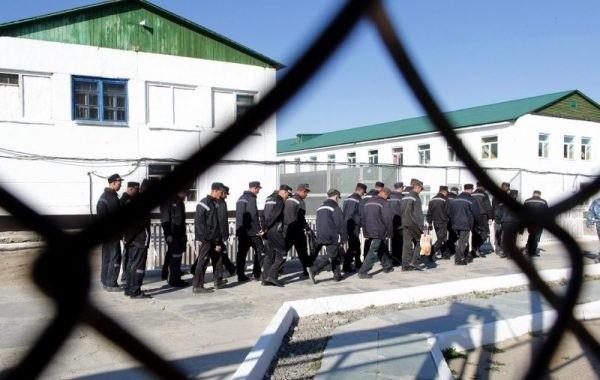 Вопрос о проведении амнистии по уголовным делам остается открытым