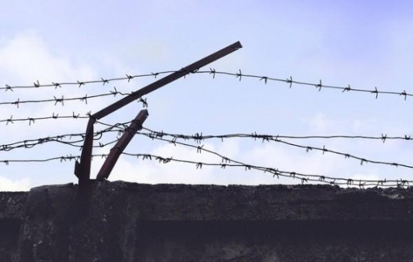 Жириновский выступает за амнистию по уголовным делам