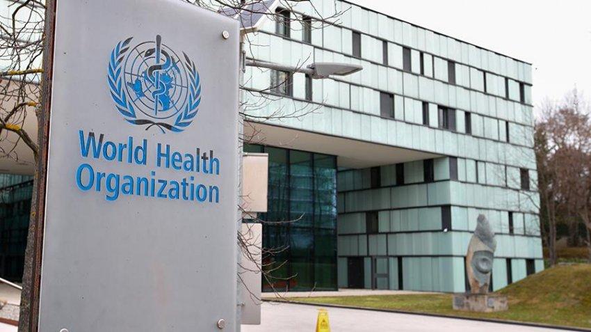 ВОЗ изучает данные о случаях заражения птичьим гриппом в России