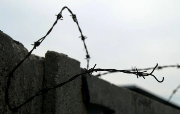 Правозащитники оценили шансы на проведение уголовной амнистии