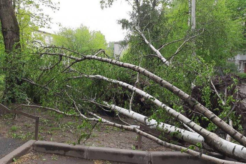 Мощный ураган пронесся по Санкт-Петербургу и оставил после себя неприятные воспоминания