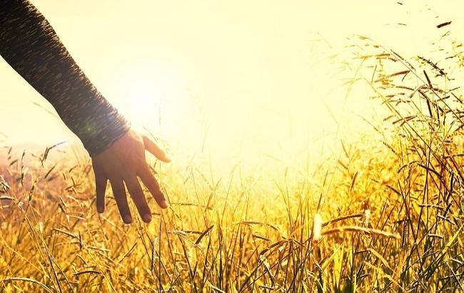Народные приметы 13 июня, в день Еремея Распрягальника