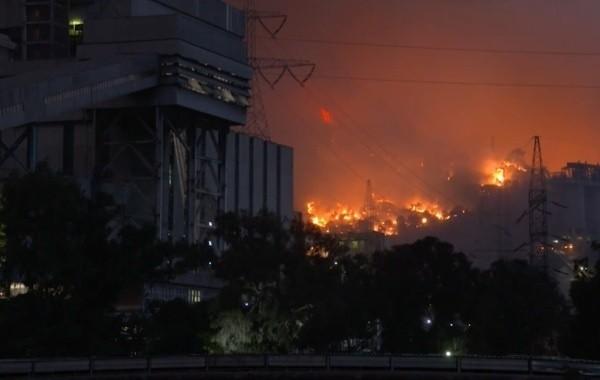Ситуация с лесными пожарами в Турции стабилизировалась