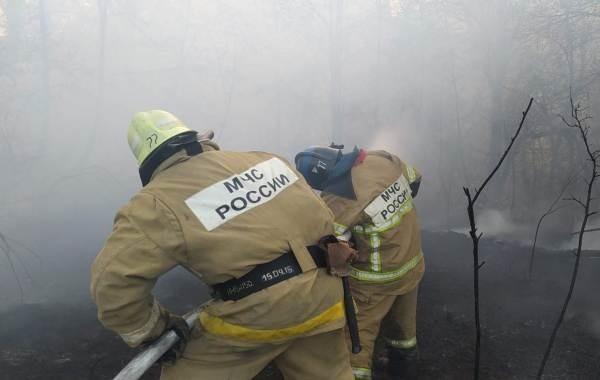 В Башкирии продолжают тушить масштабные лесные пожары