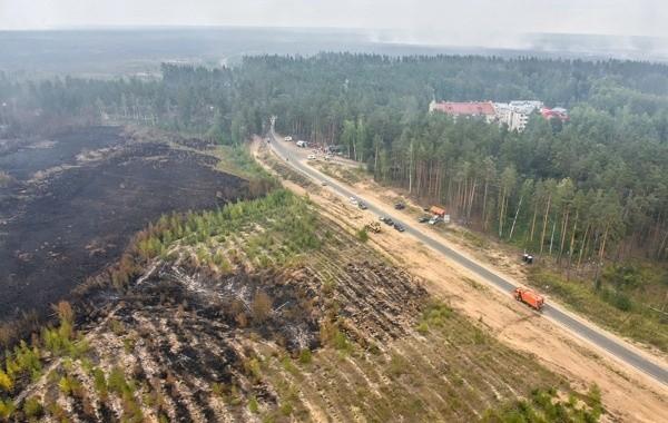 В Марий Эл при тушении лесного пожара пострадал волонтер
