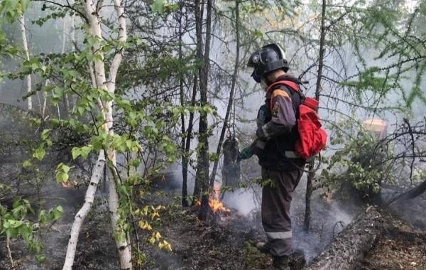 В Якутии за сутки потушили лесные пожары на нескольких тысячах гектаров